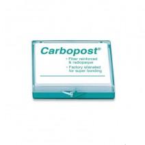 Carbopost Postes de Fibra de Carbono Reposición 10 Unidades