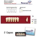 Dientes Acrílicos Newcryl Inferiores Color C2