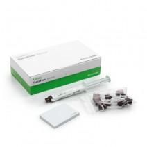 Guttaflow Bioseal Kit Cemento Sellador Jeringa 5ml.+Acc.