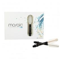 Mosaic Intro Kit Composite Universal 5 Jeringas 4g.
