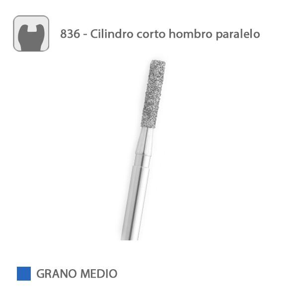 Fresa Diamante Cilindro Corto Hombro Paralelo 836 Grano Medio FG
