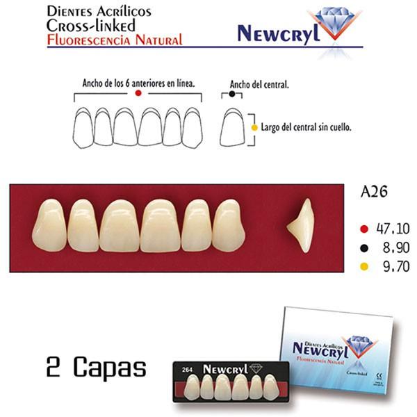 Dientes Acrílicos Newcryl Superiores Color A2